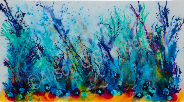 1251colourful coral watermarked.jpg